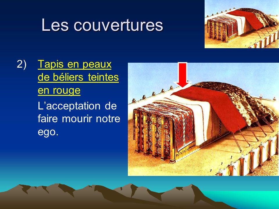 Les couvertures 2) Tapis en peaux de béliers teintes en rouge
