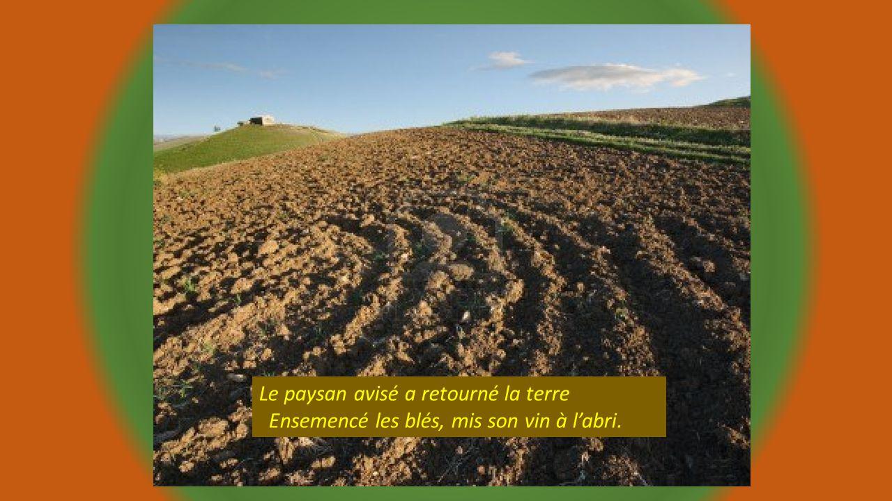 Le paysan avisé a retourné la terre