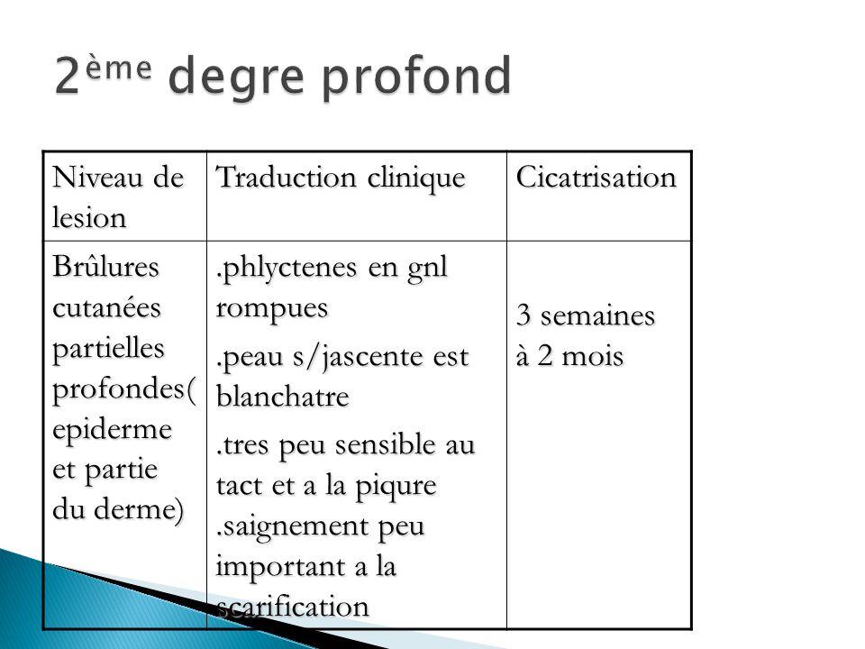 2ème degre profond Niveau de lesion Traduction clinique Cicatrisation