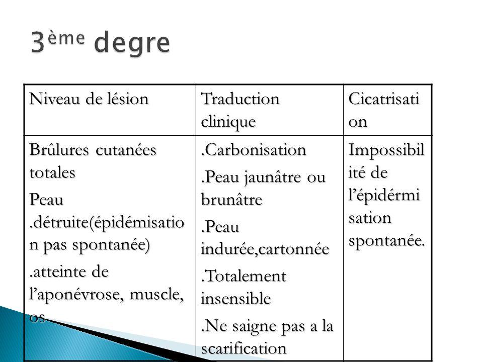 3ème degre Niveau de lésion Traduction clinique Cicatrisation