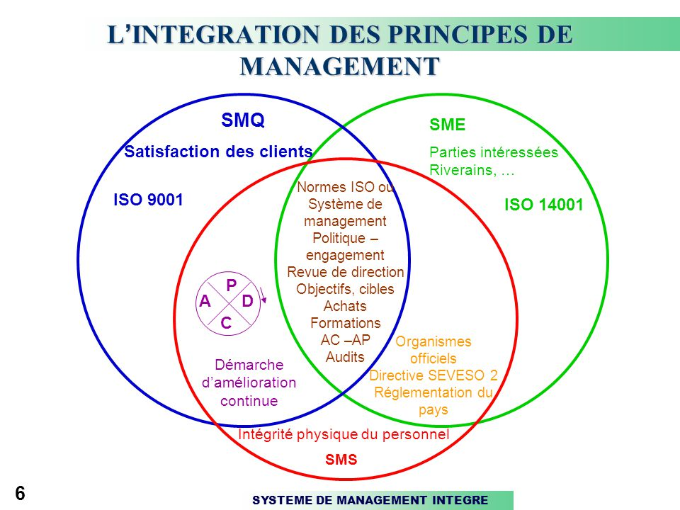 L'INTEGRATION DES PRINCIPES DE MANAGEMENT