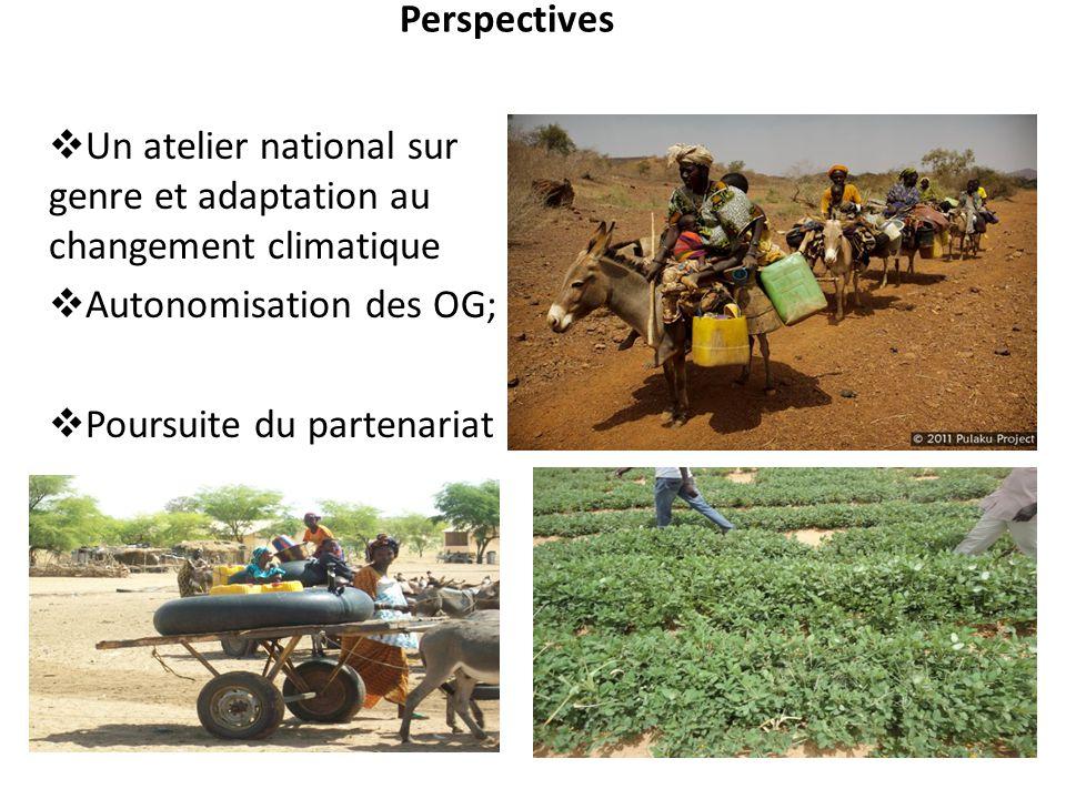 Perspectives Un atelier national sur genre et adaptation au changement climatique. Autonomisation des OG;