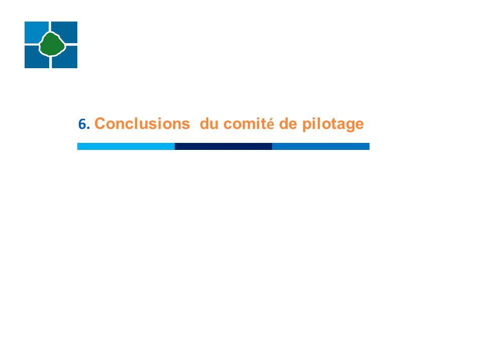 6. Conclusions du comité de pilotage