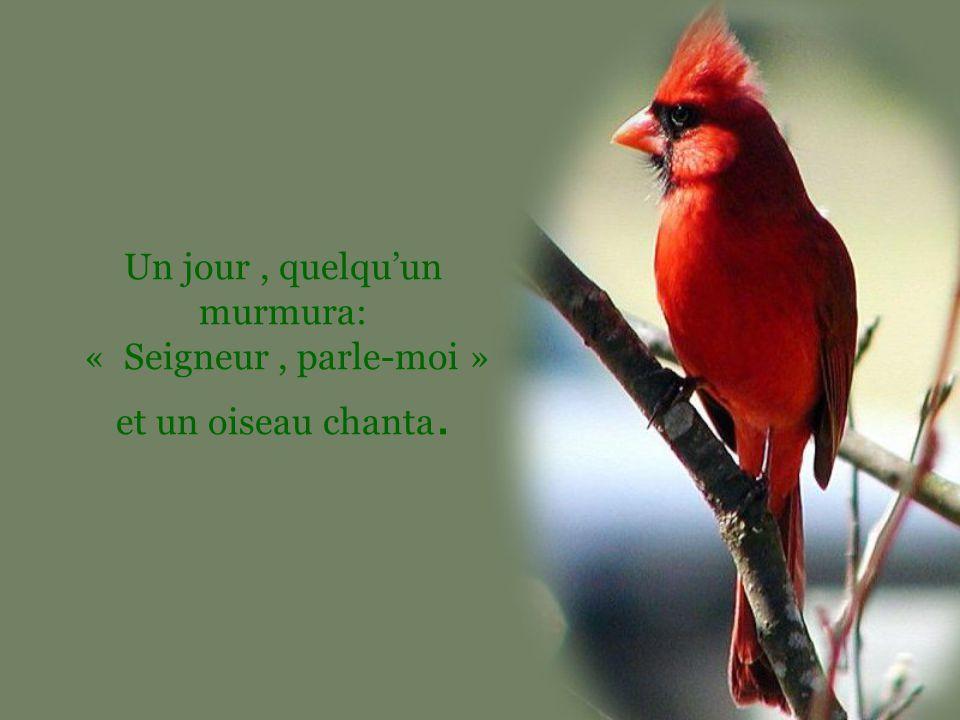 Un jour , quelqu'un murmura: « Seigneur , parle-moi » et un oiseau chanta.