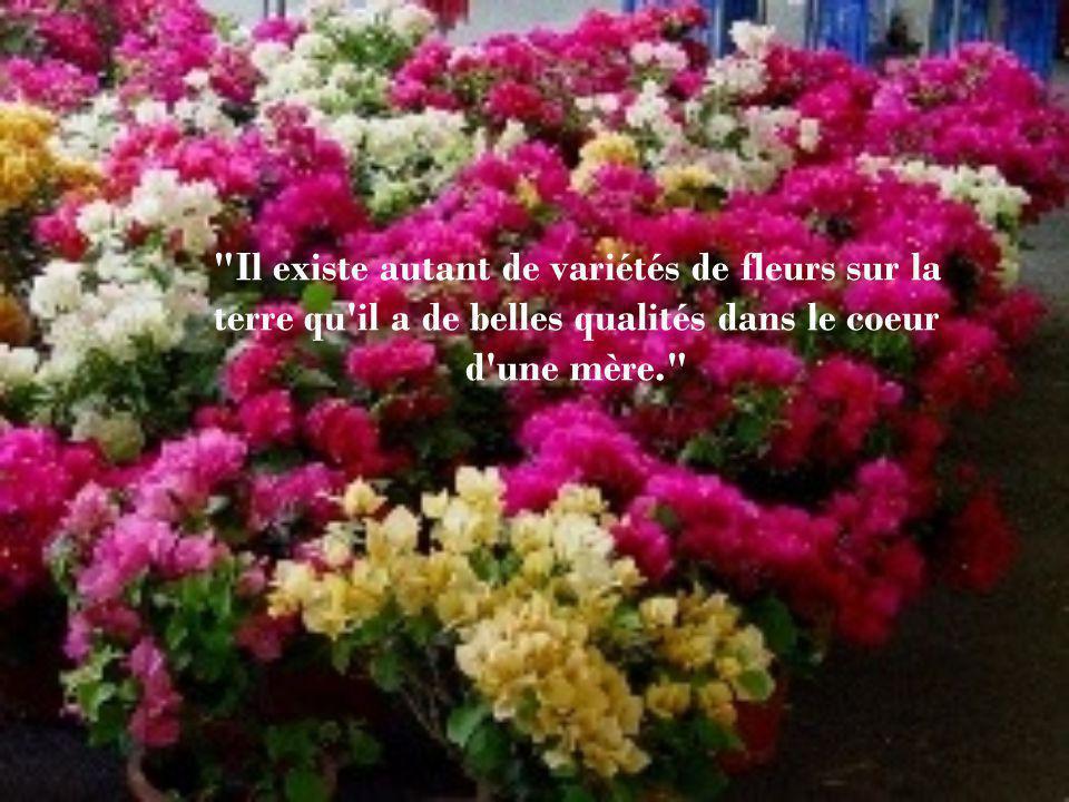 Il existe autant de variétés de fleurs sur la terre qu il a de belles qualités dans le coeur d une mère.