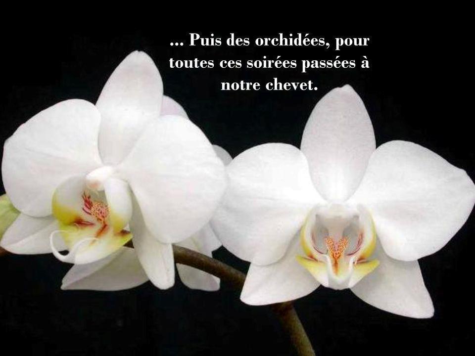 ... Puis des orchidées, pour toutes ces soirées passées à notre chevet.
