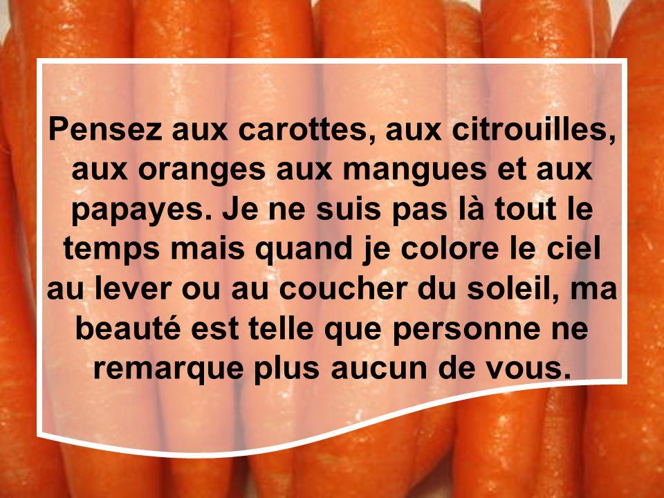 Pensez aux carottes, aux citrouilles, aux oranges aux mangues et aux papayes.