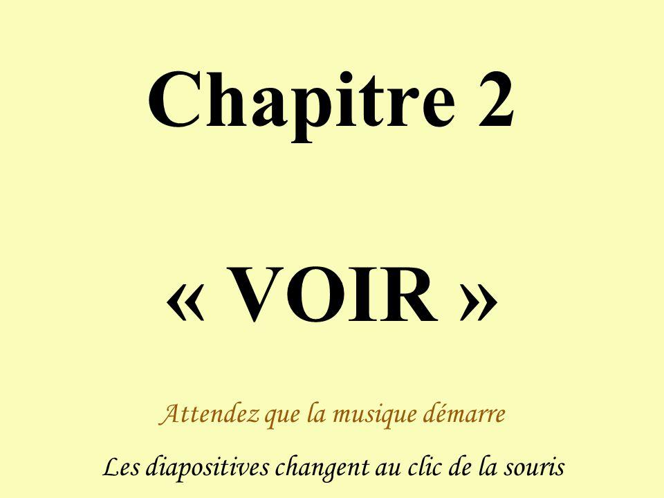 Chapitre 2 « VOIR » Attendez que la musique démarre