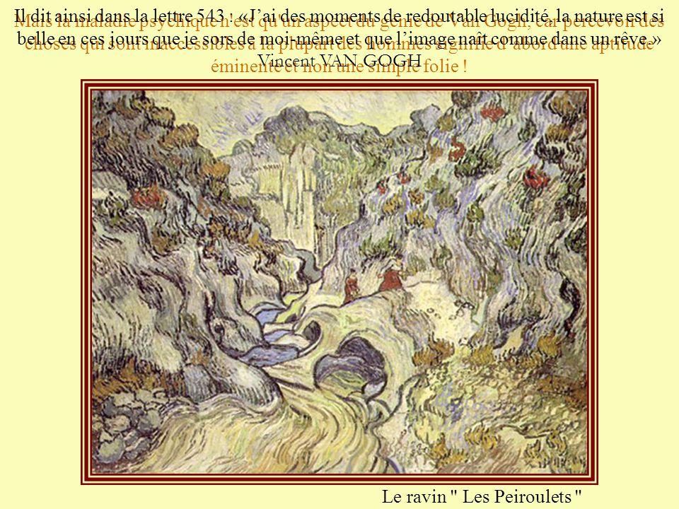 Mais la maladie psychique n est qu un aspect du génie de Van Gogh, car percevoir des choses qui sont inaccessibles à la plupart des hommes signifie d'abord une aptitude éminente et non une simple folie !