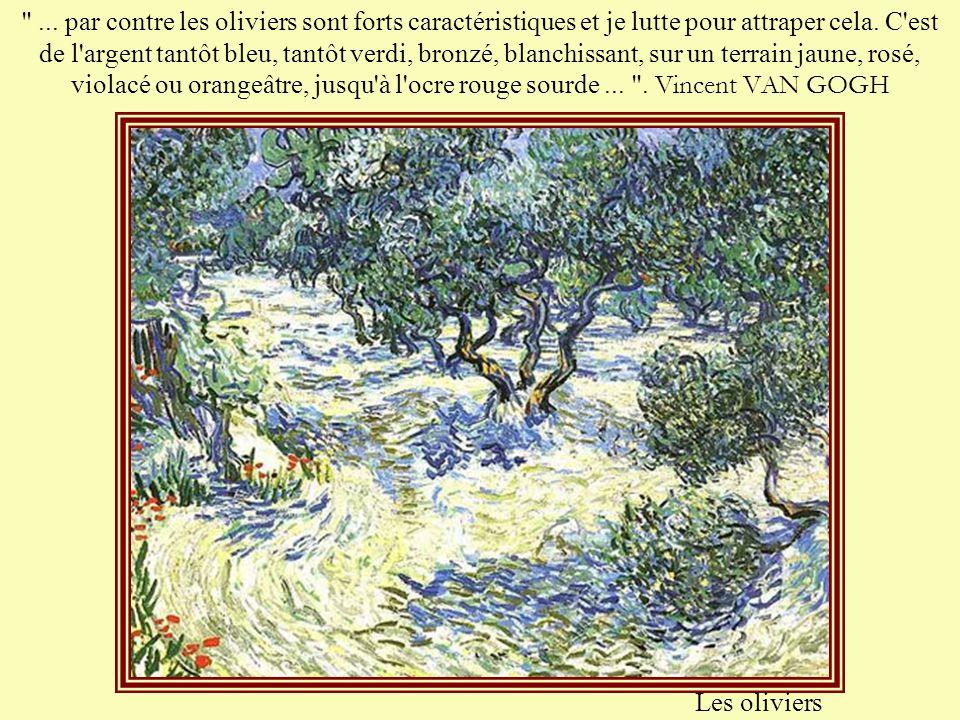 ... par contre les oliviers sont forts caractéristiques et je lutte pour attraper cela. C est de l argent tantôt bleu, tantôt verdi, bronzé, blanchissant, sur un terrain jaune, rosé, violacé ou orangeâtre, jusqu à l ocre rouge sourde ... . Vincent VAN GOGH