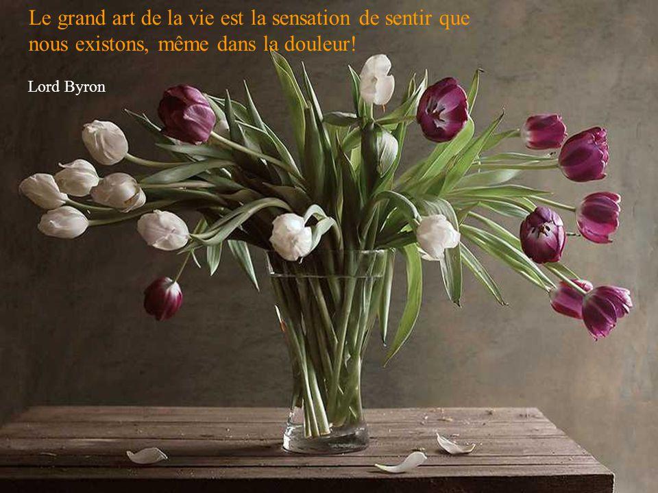 Le grand art de la vie est la sensation de sentir que nous existons, même dans la douleur!