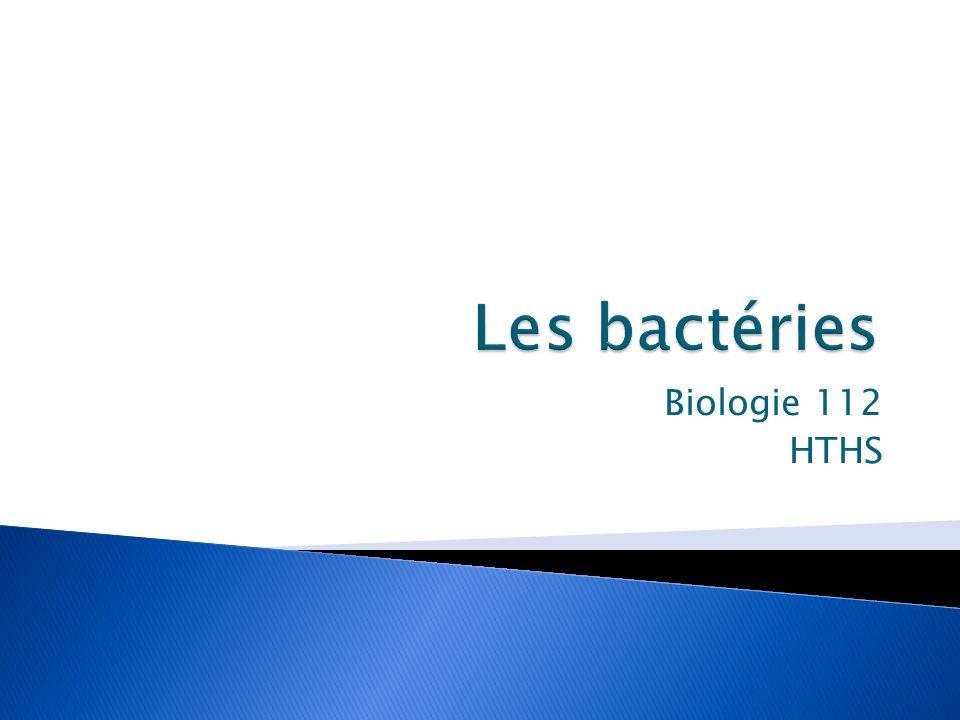 Les bactéries Biologie 112 HTHS