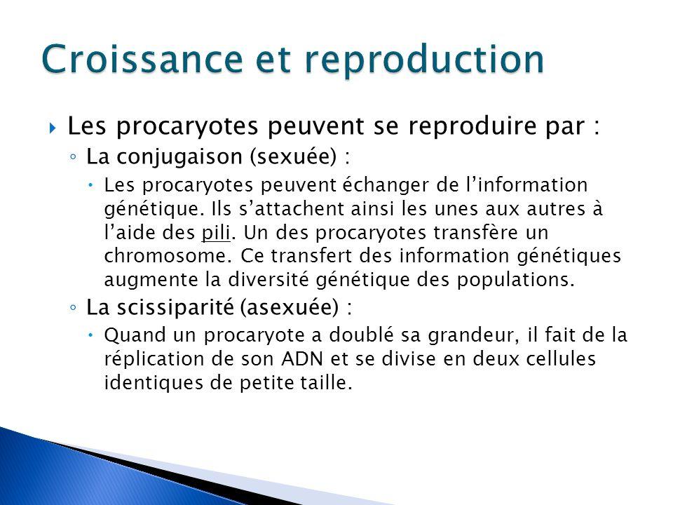 Croissance et reproduction