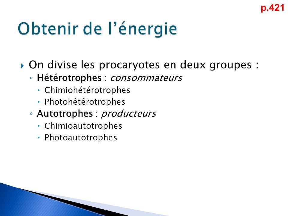 Obtenir de l'énergie On divise les procaryotes en deux groupes : p.421