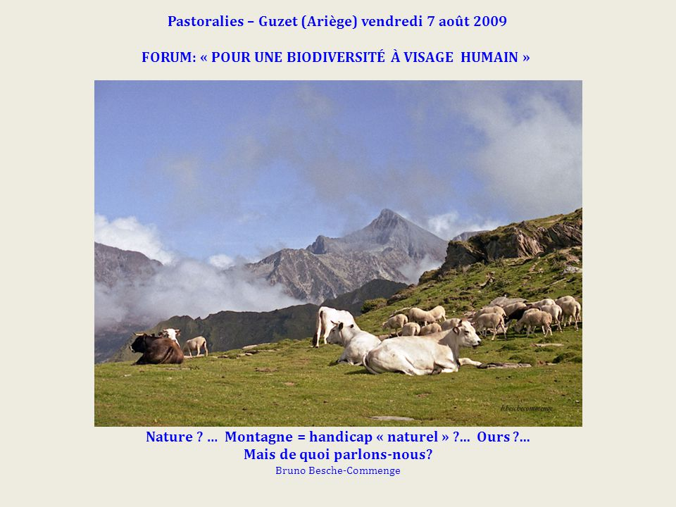 Pastoralies – Guzet (Ariège) vendredi 7 août 2009