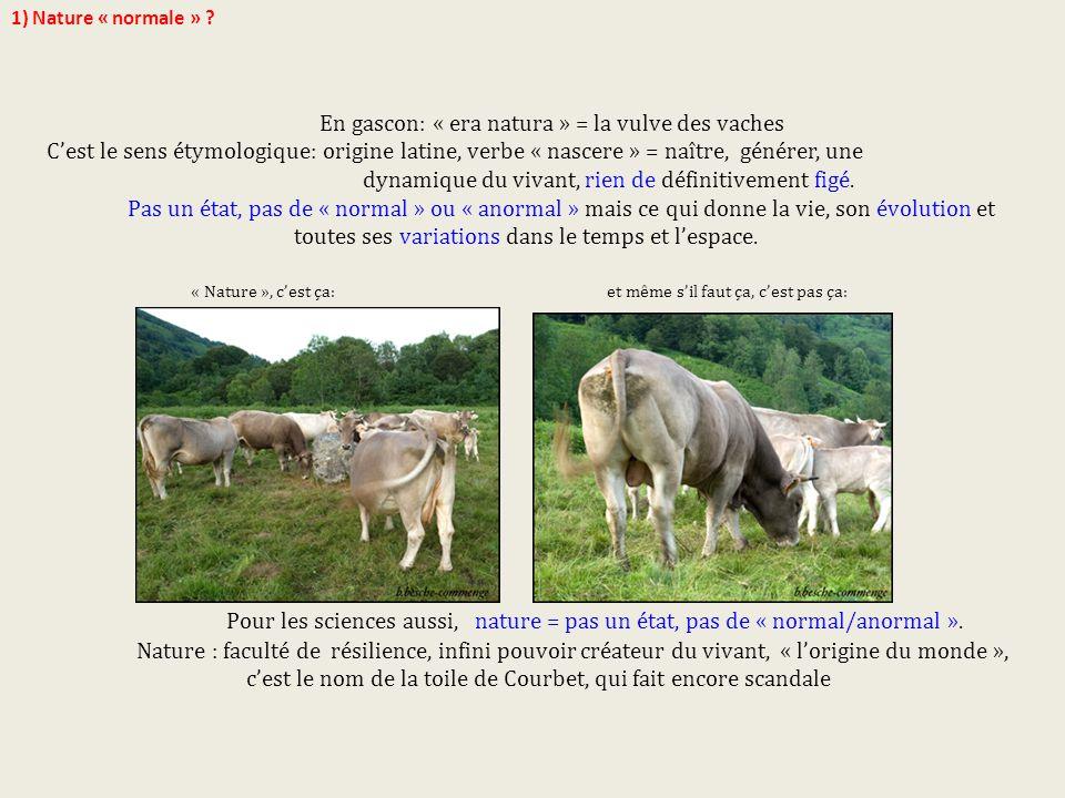 En gascon: « era natura » = la vulve des vaches