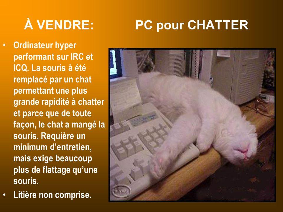 À VENDRE: PC pour CHATTER