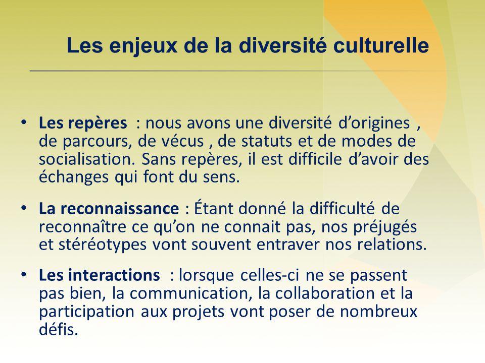 Les enjeux de la diversité culturelle