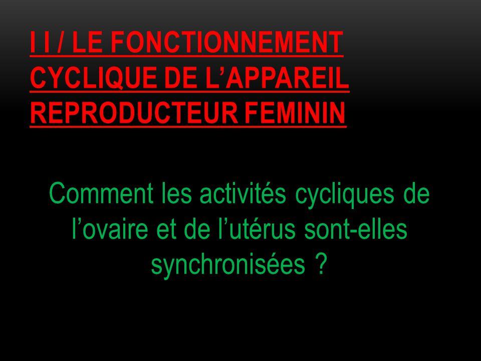 I i / le fonctionnement CYCLIQUE DE L'APPAREIL REPRODUCTEUR FEMININ