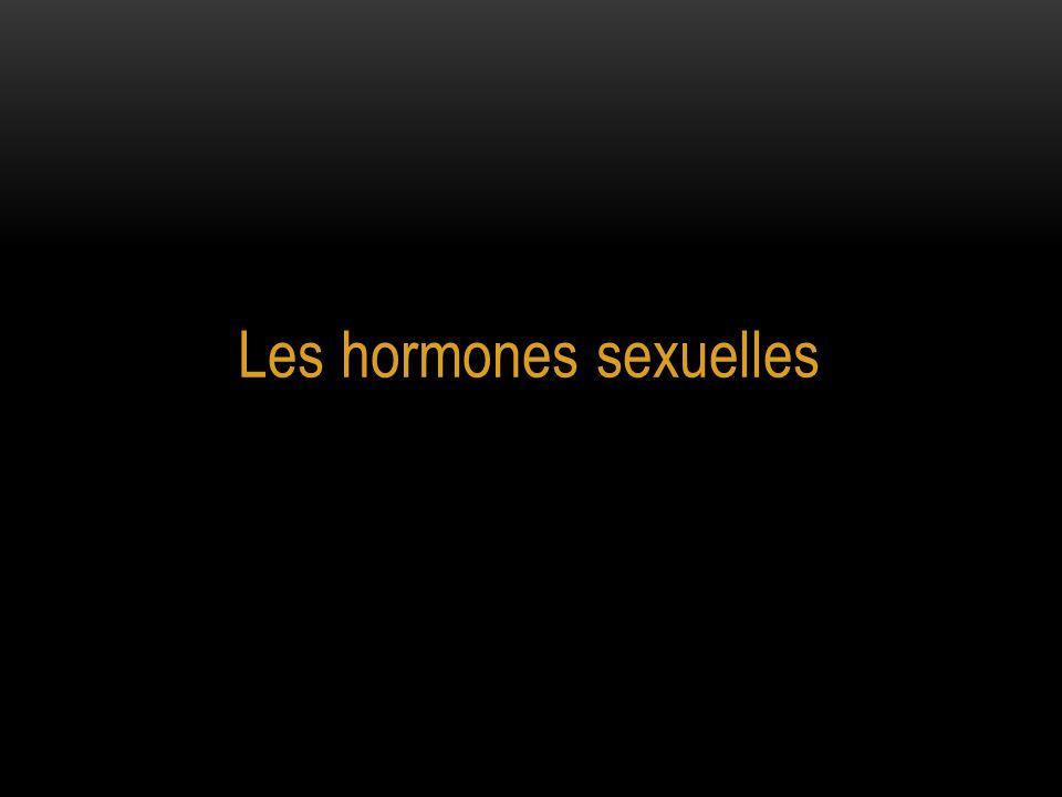 Les hormones sexuelles