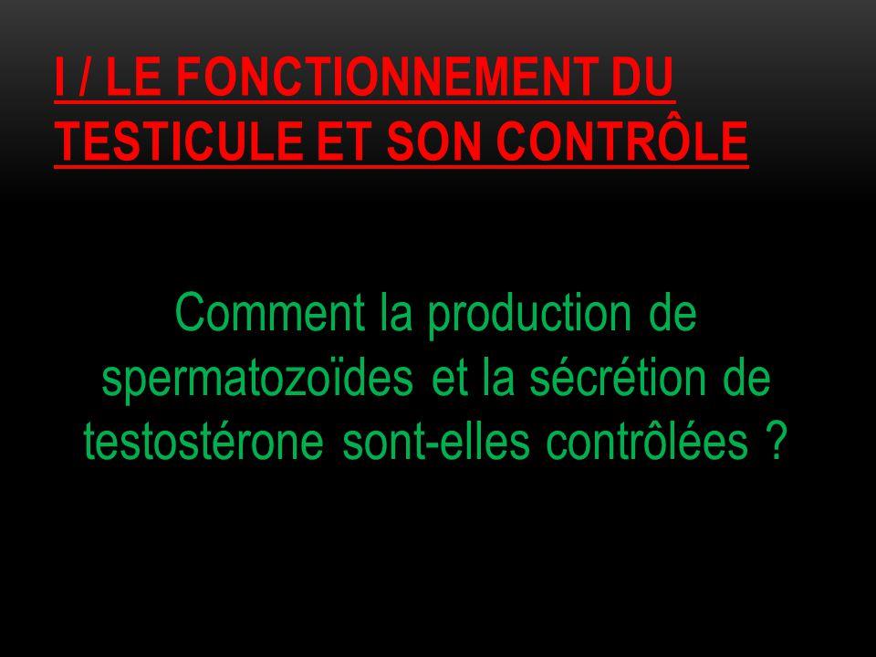 I / le fonctionnement du testicule et son contrôle