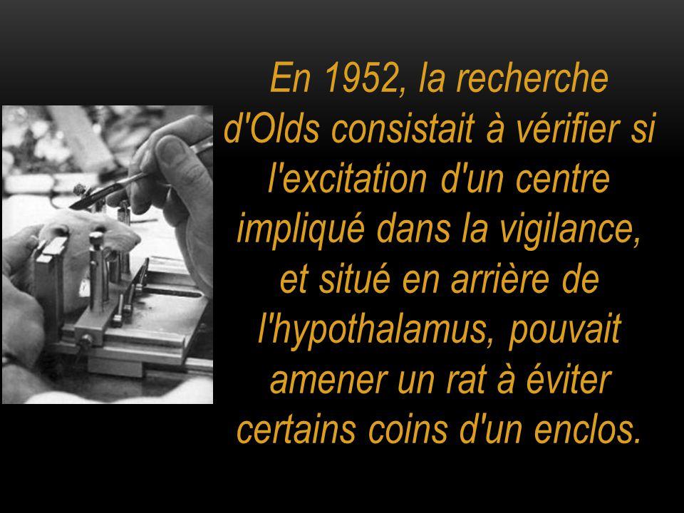 En 1952, la recherche d Olds consistait à vérifier si l excitation d un centre impliqué dans la vigilance, et situé en arrière de l hypothalamus, pouvait amener un rat à éviter certains coins d un enclos.
