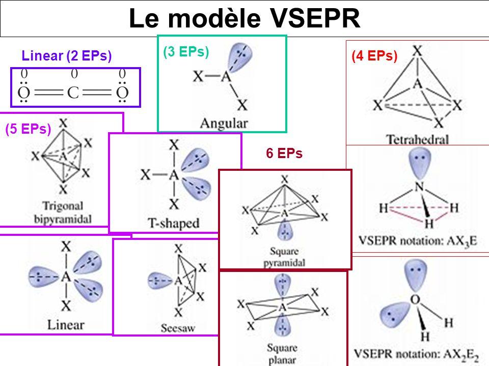 Le modèle VSEPR (3 EPs) Linear (2 EPs) (4 EPs) (5 EPs) 6 EPs.