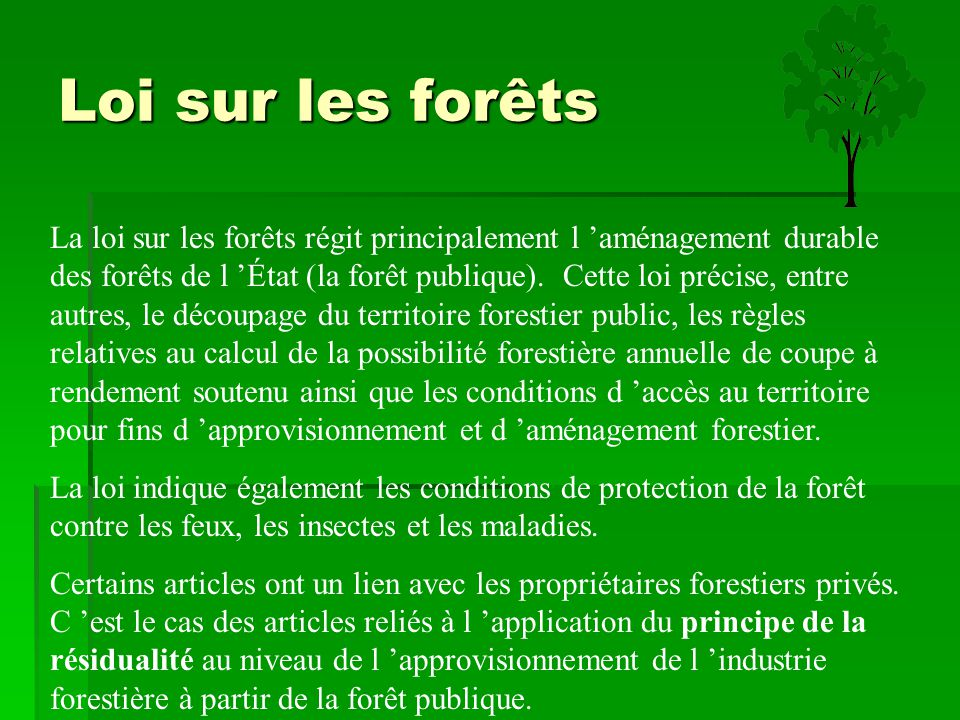 Loi sur les forêts