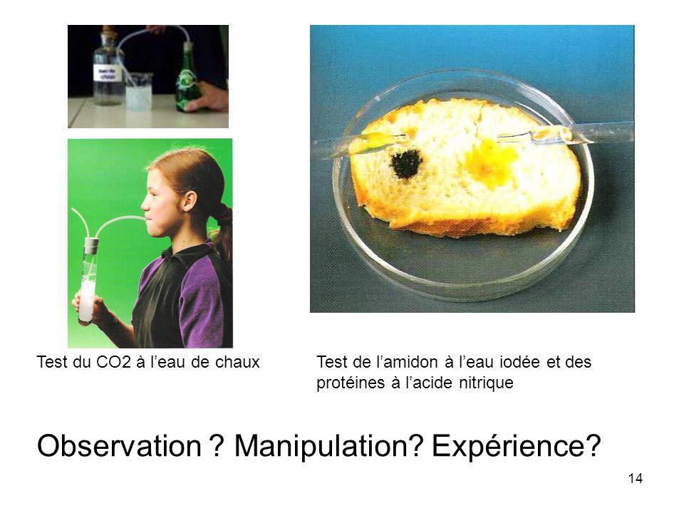 Observation Manipulation Expérience
