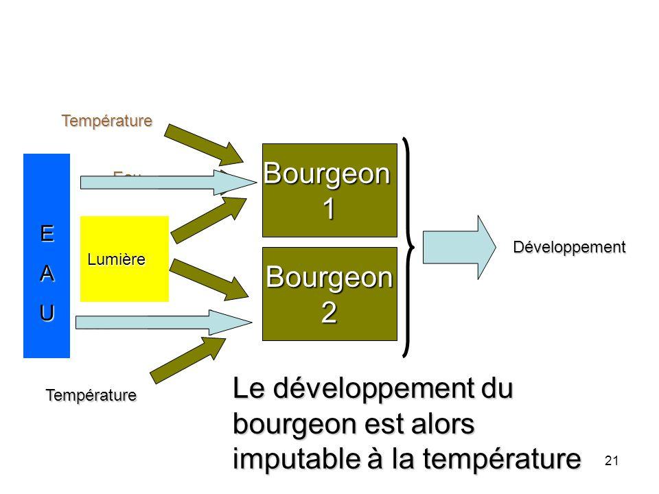 Le développement du bourgeon est alors imputable à la température