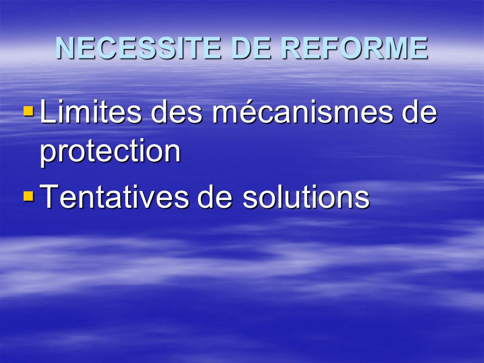 Limites des mécanismes de protection Tentatives de solutions