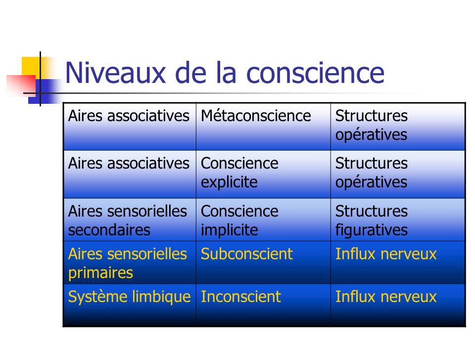 Niveaux de la conscience