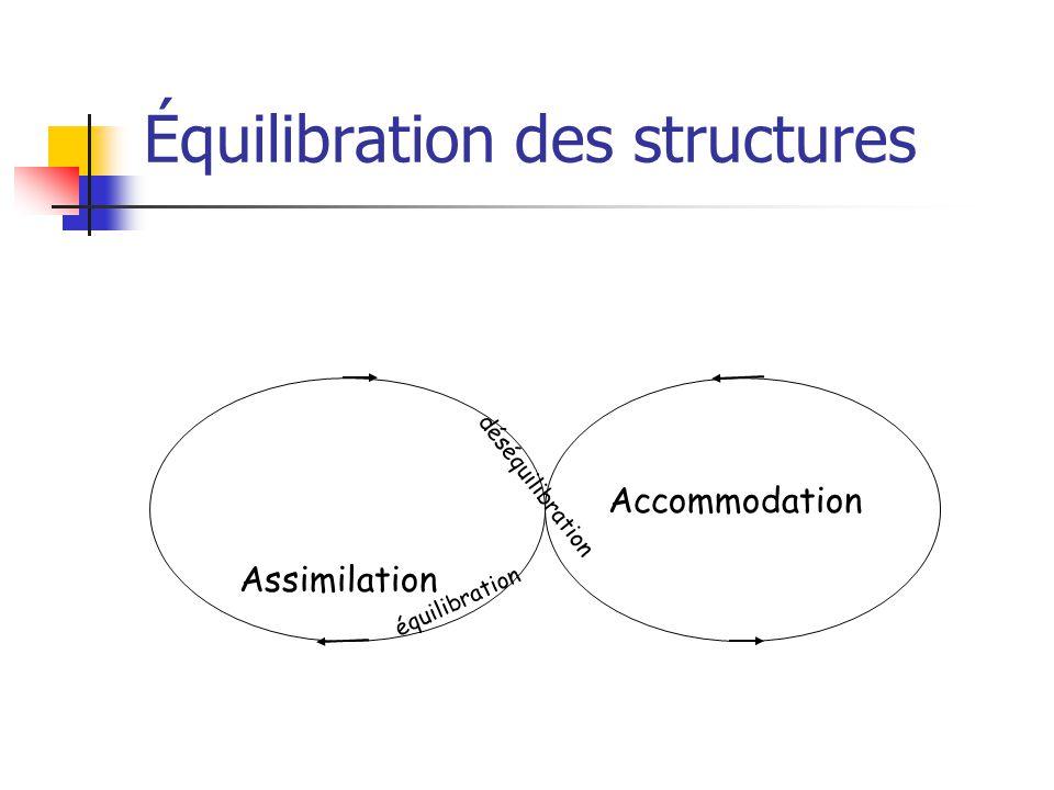Équilibration des structures