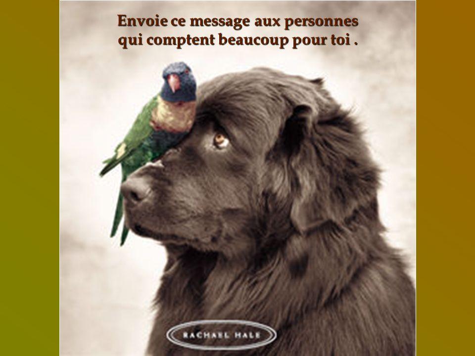 Envoie ce message aux personnes qui comptent beaucoup pour toi .