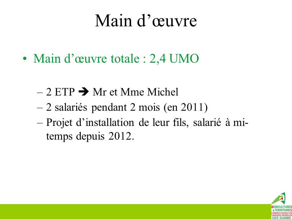 Main d'œuvre Main d'œuvre totale : 2,4 UMO 2 ETP  Mr et Mme Michel