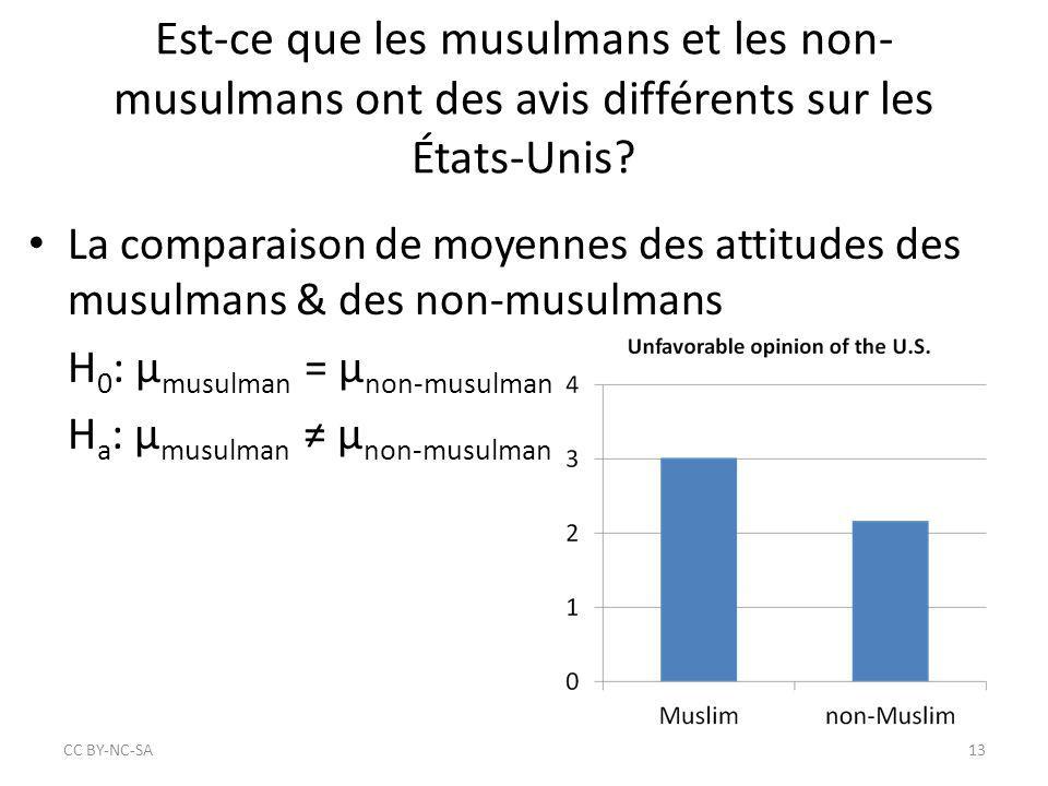 Est-ce que les musulmans et les non-musulmans ont des avis différents sur les États-Unis