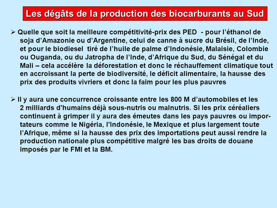 Les dégâts de la production des biocarburants au Sud