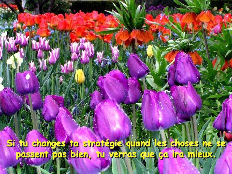 Si tu changes ta stratégie quand les choses ne se passent pas bien, tu verras que ça ira mieux.