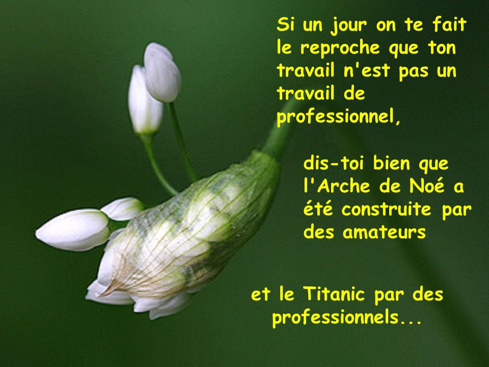 et le Titanic par des professionnels...