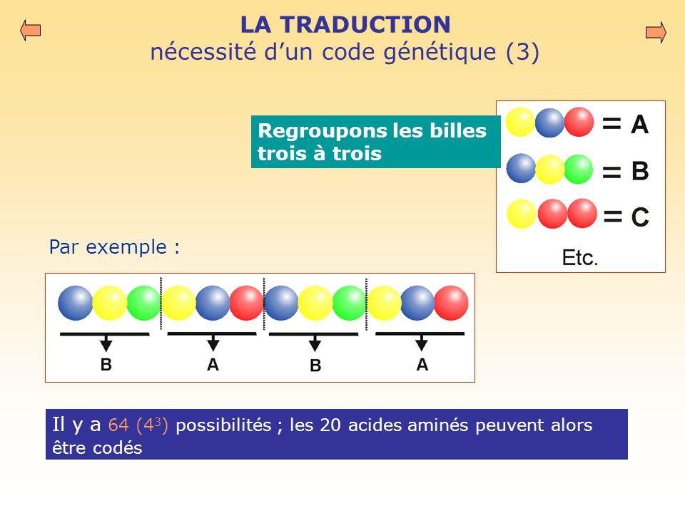 LA TRADUCTION nécessité d'un code génétique (3)