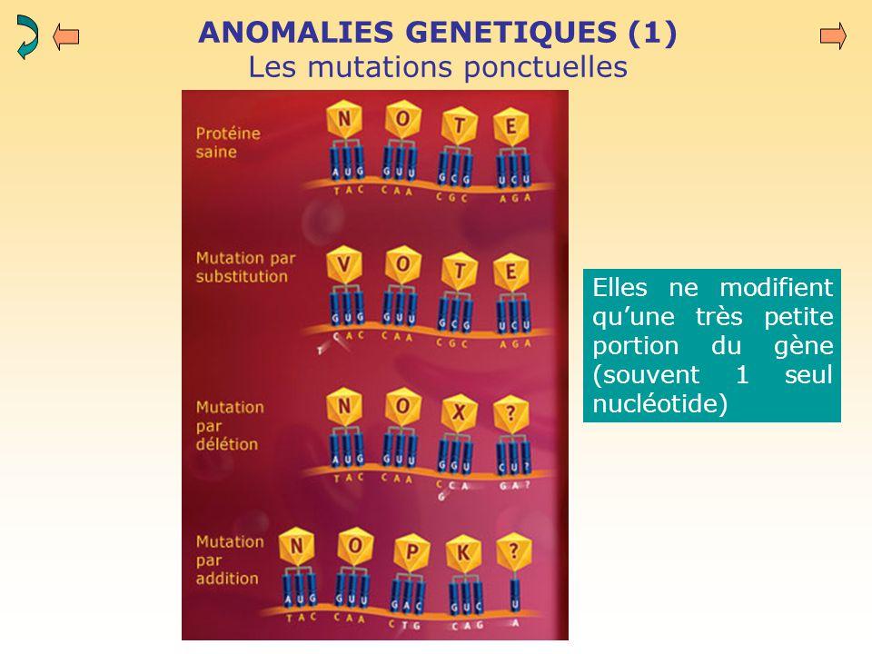 ANOMALIES GENETIQUES (1) Les mutations ponctuelles