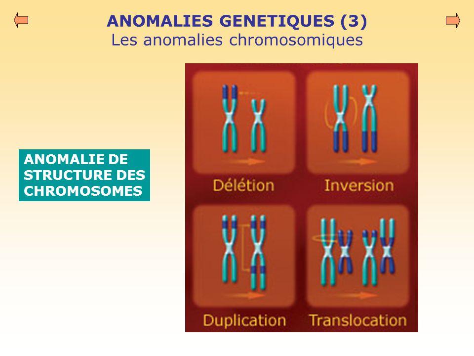 ANOMALIES GENETIQUES (3) Les anomalies chromosomiques