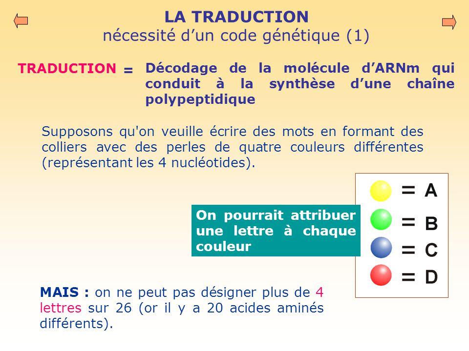 LA TRADUCTION nécessité d'un code génétique (1)
