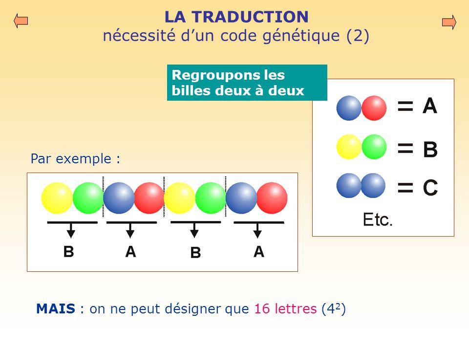 LA TRADUCTION nécessité d'un code génétique (2)