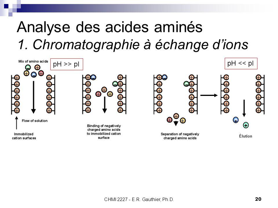 Analyse des acides aminés 1. Chromatographie à échange d'ions