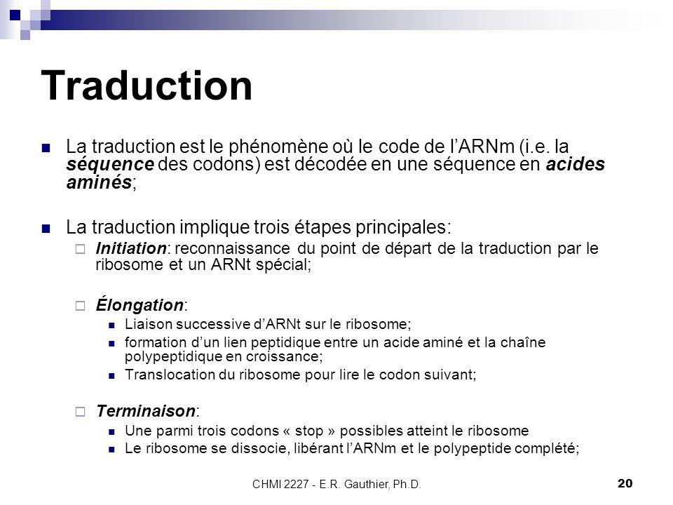 Traduction La traduction est le phénomène où le code de l'ARNm (i.e. la séquence des codons) est décodée en une séquence en acides aminés;