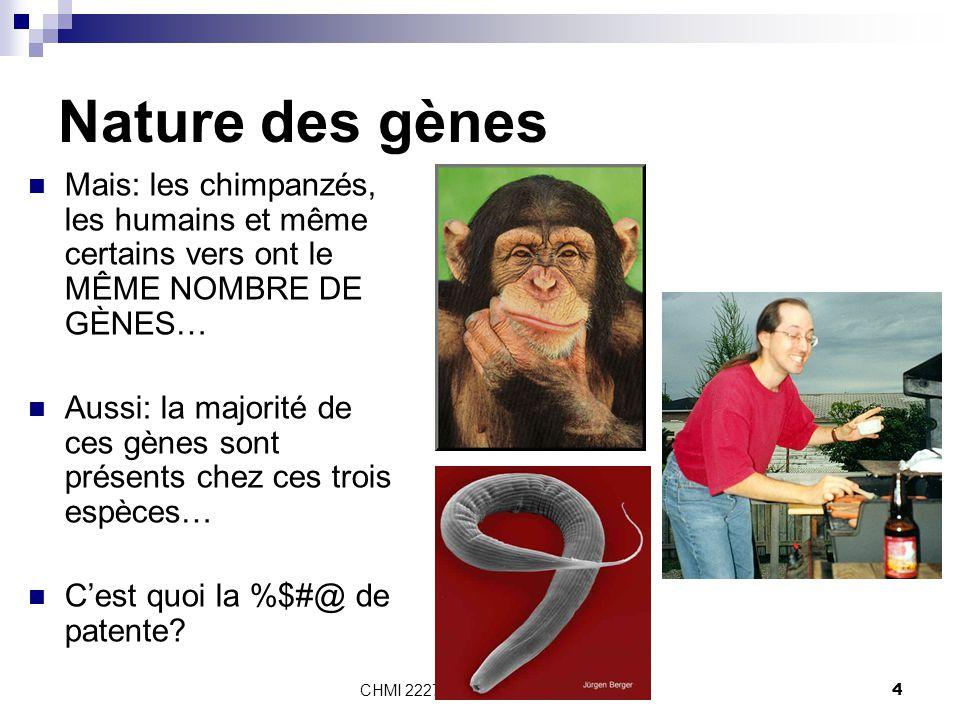 Nature des gènes Mais: les chimpanzés, les humains et même certains vers ont le MÊME NOMBRE DE GÈNES…