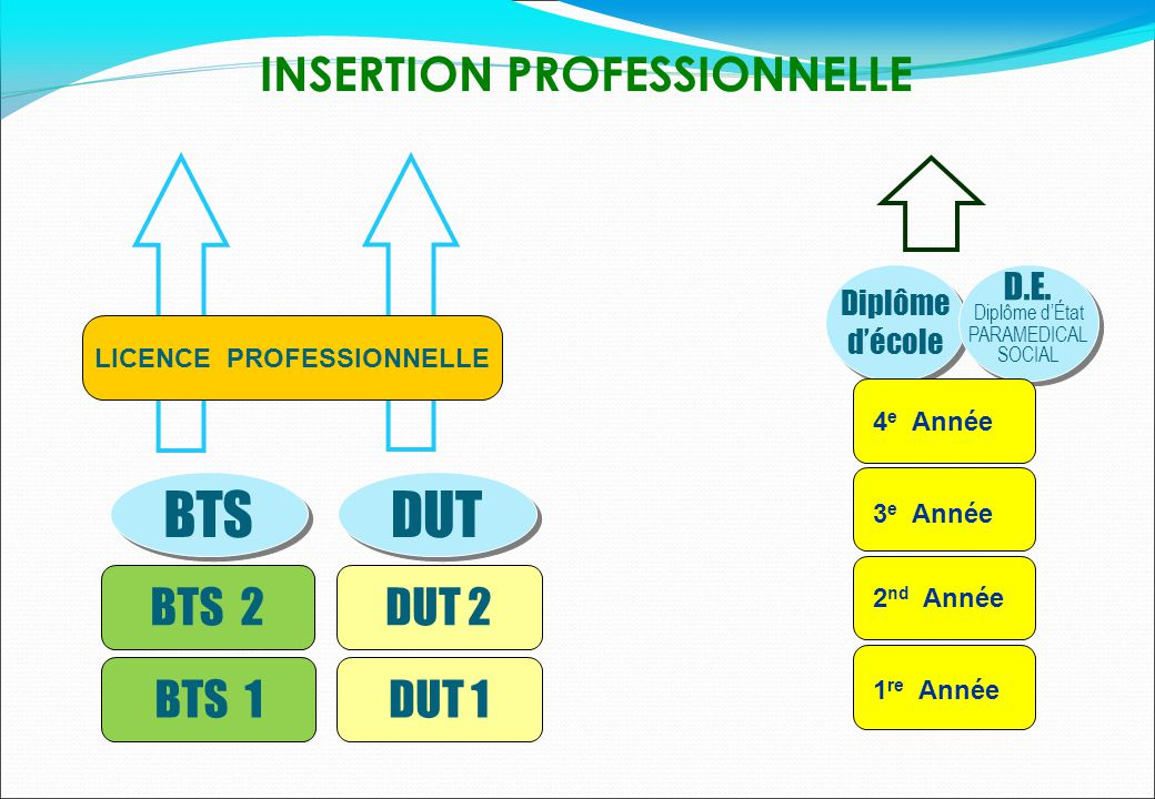 INSERTION PROFESSIONNELLE LICENCE PROFESSIONNELLE