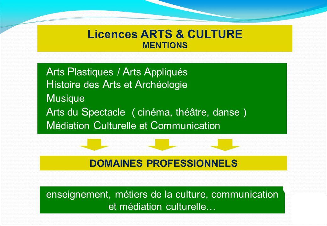 Licences ARTS & CULTURE DOMAINES PROFESSIONNELS