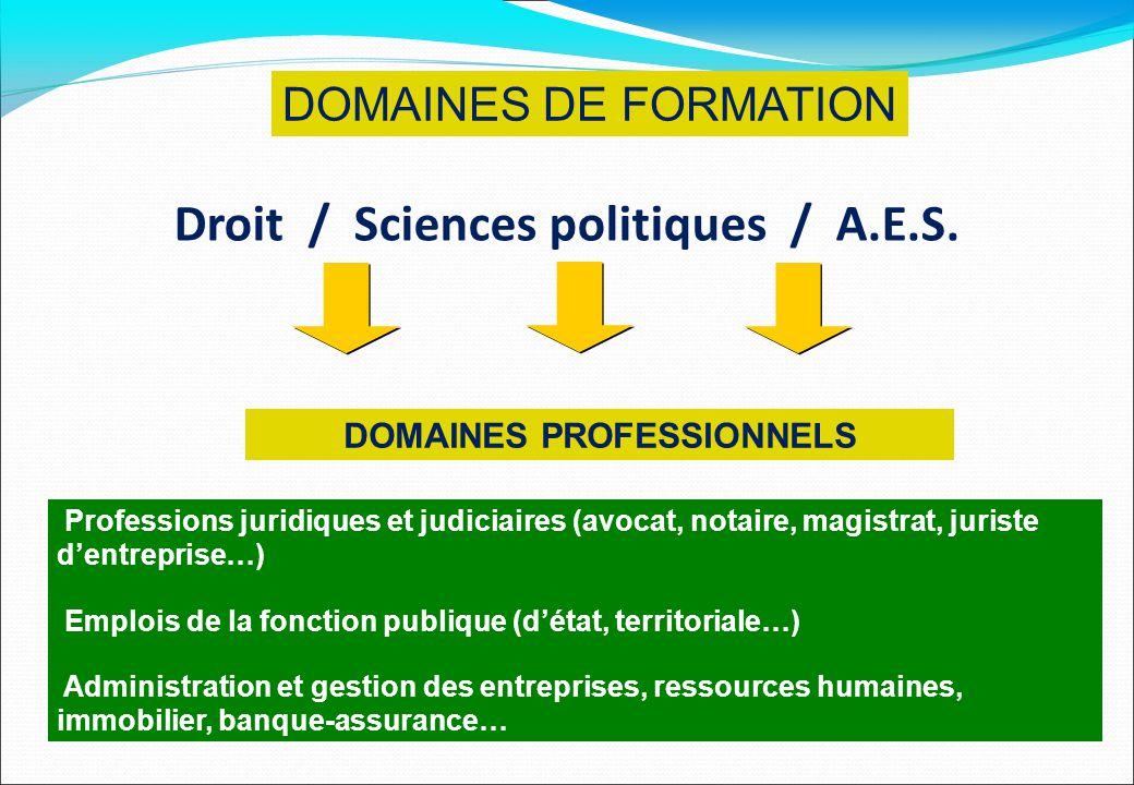 Droit / Sciences politiques / A.E.S. DOMAINES PROFESSIONNELS